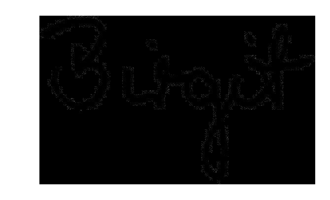 Signature BirgitD