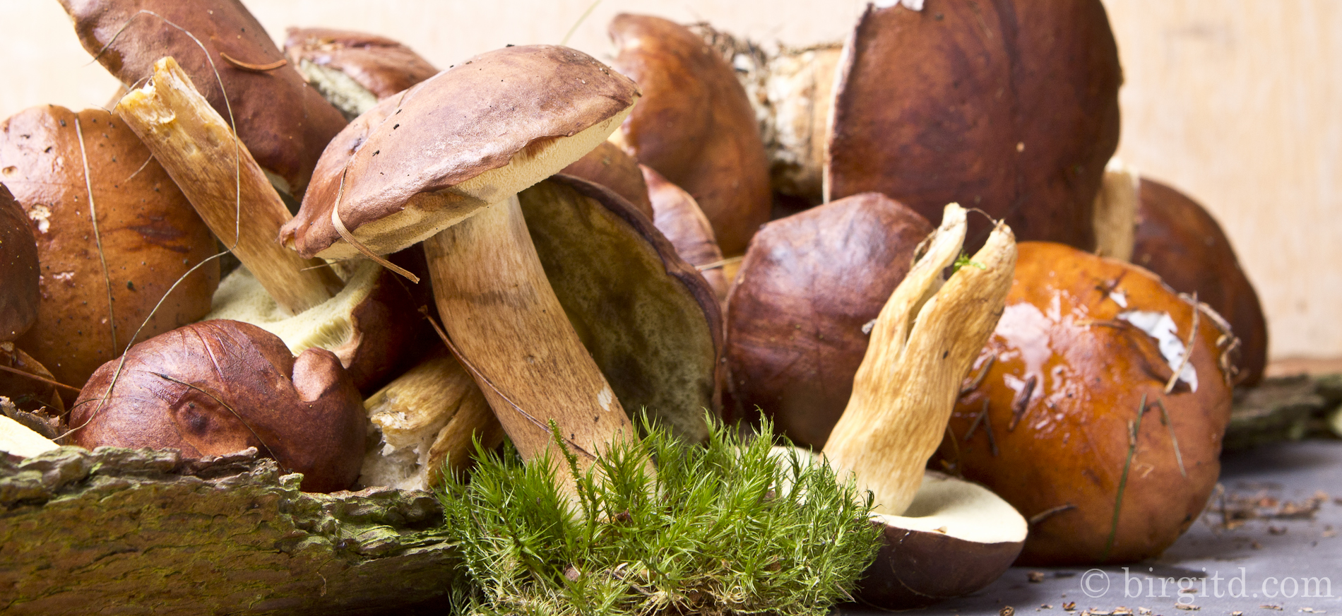 Wald-Pilz-Pfanne mit Pasta & Cabanossi – frisch aus dem Wald auf den Tisch