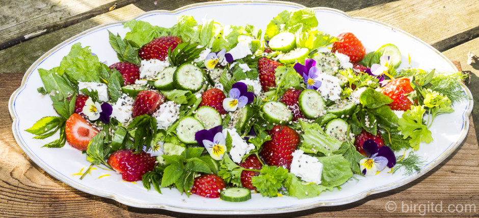 Frühlingsfrischer Salat