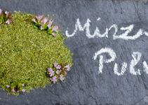Minz-Pulver ♥ Mint powder