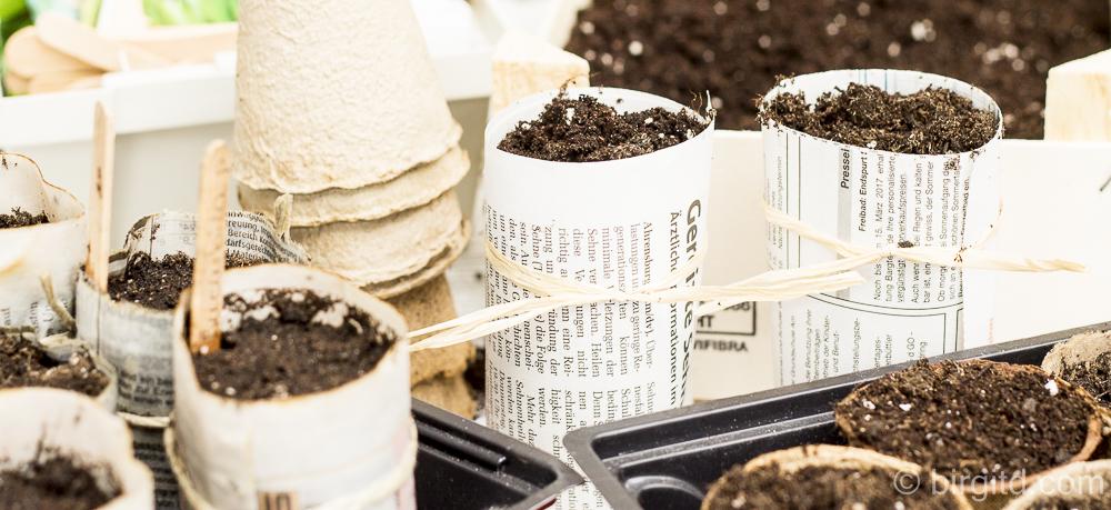 DIY: Anzuchttöpfchen aus Zeitungspapier selbst herstellen – einfach & schnell