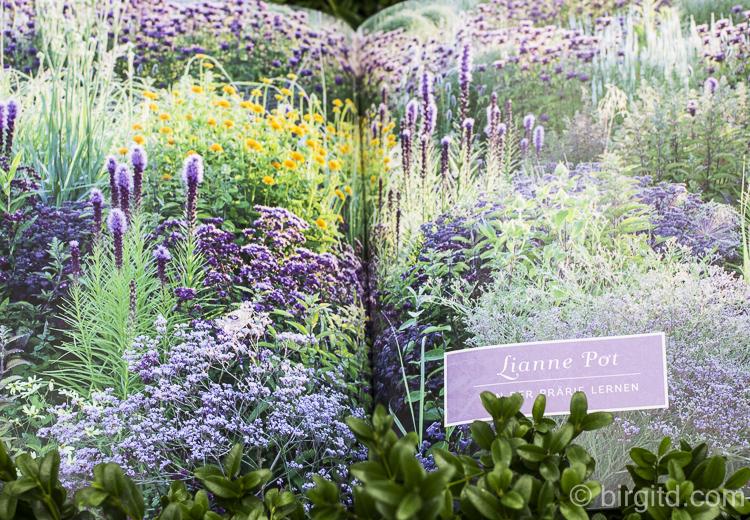 Frauen und ihre Gärten-