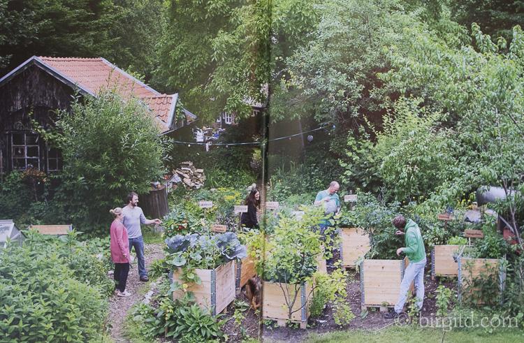 Die Stadtgärtner in Aktion - Bild aus: Frisch aus dem Hochbeet