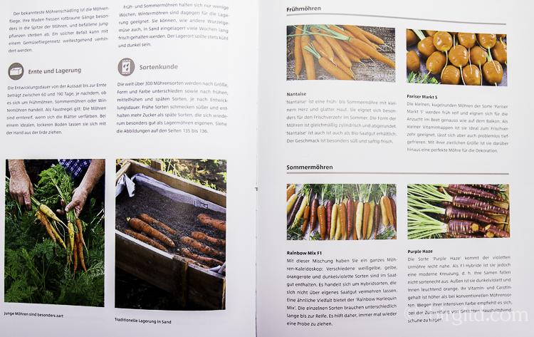 Gemüse und Kräuter im Garten - Möhren (Foto aus dem Buch)