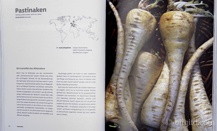 Gemüse und Kräuter im Garten - Pastinaken (Foto aus dem Buch)