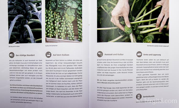 Gemüse und Kräuter im Garten - Rosenkohl (Foto aus dem Buch)