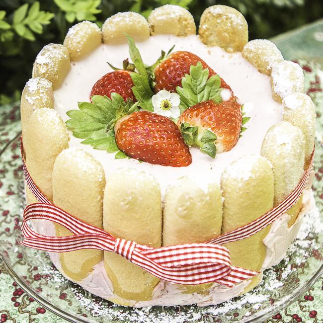 Charlotte russe mit Erdbeeren