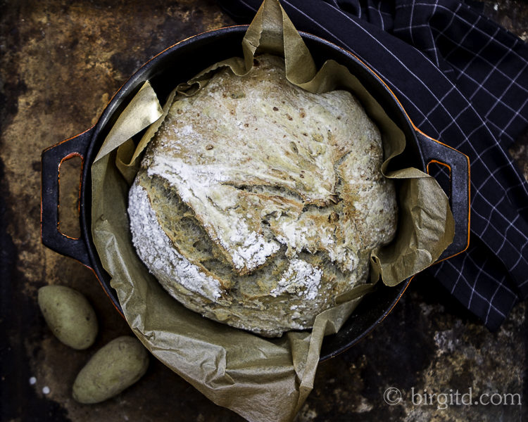 No-knead Kartoffelbrot im Topf gebacken