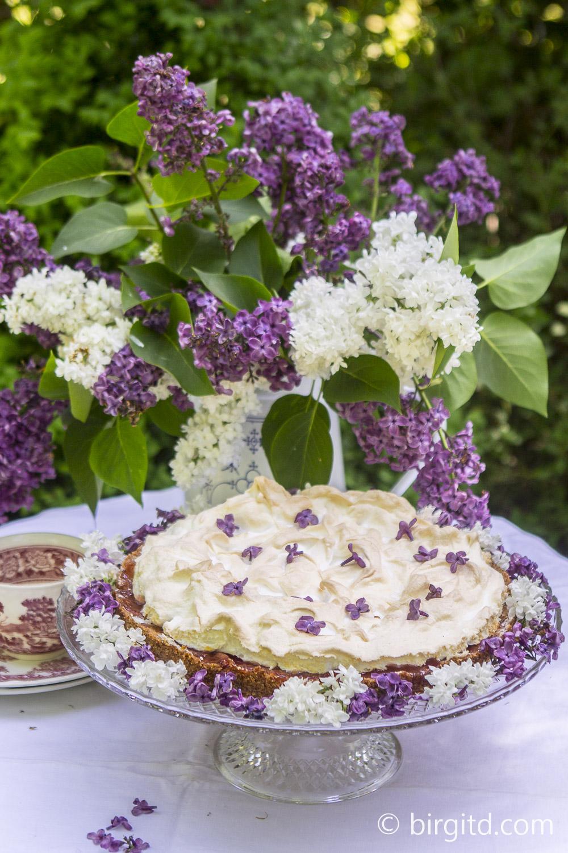 Rhabarber-Kokoskuchen mit Baiserwolken